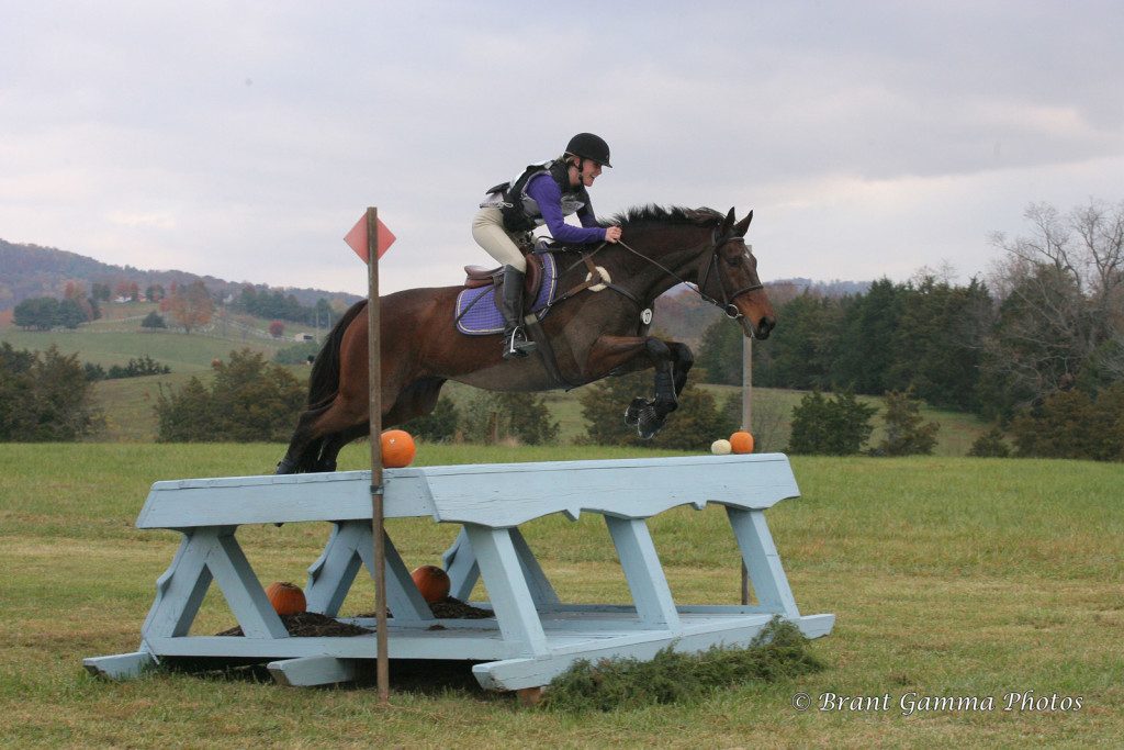 November 2014. 2nd place in Open Intermediate at Virginia Horse Trials.
